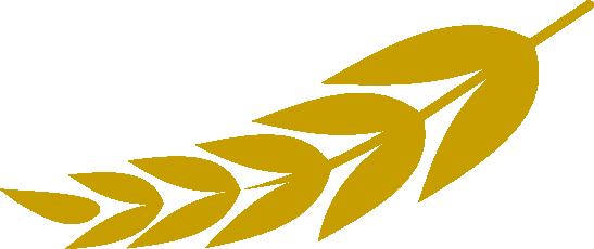 Steinkellner Landmaschinen